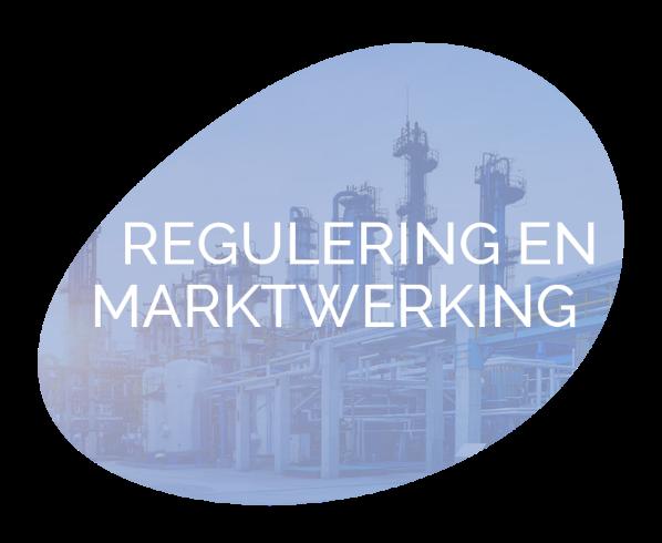 Regulering en Marktwerking